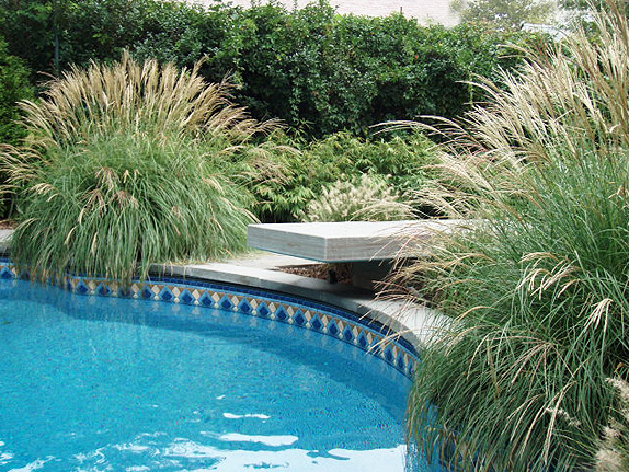 Outdoor pool with landscape design around it.